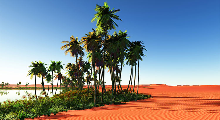 Sellers: Your Home is an Oasis in an Inventory Desert